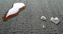 """Z cyklu: """"PYTANIA OD CZYTELNIKÓW: czyszczenie tapicerek i dywanów krok po kroku – plamy z oleju"""""""
