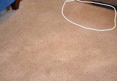 """Z cyklu: """"Metody czyszczenie dywanów i tapicerek – ciemne plamy"""