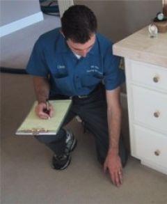 """Z cyklu: """"Metody czyszczenie dywanów i tapicerek – Uwagi odnośnie metod czyszczenia codziennego i prania dywanów"""""""