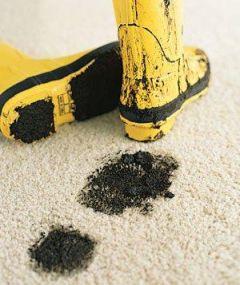 """Z cyklu: """"Metody czyszczenie dywanów i tapicerek – domowe rozwiązania"""""""